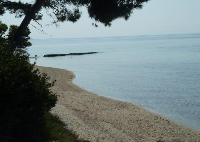 Apartment Foresy in Siviri Chalkidiki