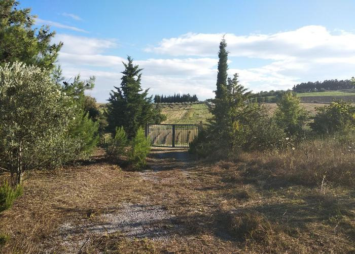 Land plot in Pieria