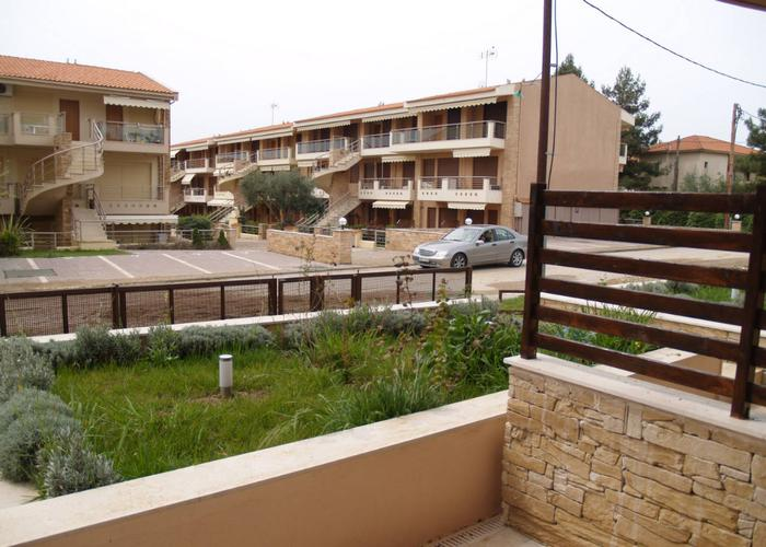 Apartments Danai in Gerakini Chalkidiki